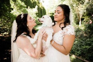 wedding dog with two brides at their wedding day